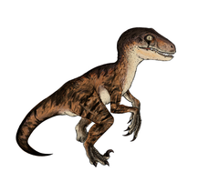 Velociraptor colored by Hydro-King