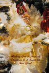 Lormet-Xmas-message-0161d-sml2 by Lormet-Images