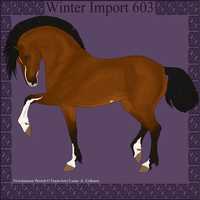Winter Import 603 by ThatDenver