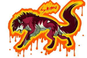 Shima by Velkss