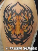 Tribal And Tiger by mxw8