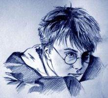 Harry by kleinmeli