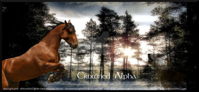Crowned Alpha by AmbersArtGallery