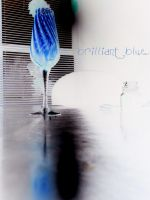 Brilliant blue. by Trippy-CS