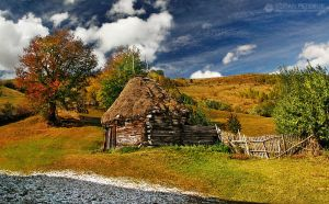 Autumn colors in Apuseni Mountains 3 by adypetrisor