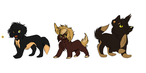 The Tillie Puppies: Comparism by Wolf-Chalk