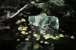 Gift: Water Lily by skyfever