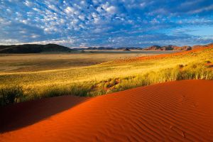 Across the Plains by hougaard