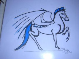 Pegasus... by strainam