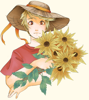 Helianthus by MeltdownProject