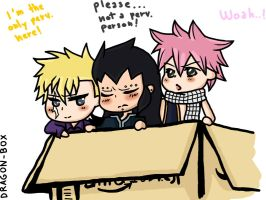 Fairy Tail - Dragon Box by kyokogamer