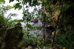 Los Haitises  National Park Dominican Republic 60 by FairieGoodMother