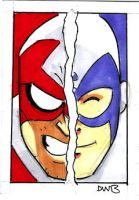 HAWK and DOVE Sketchcard by thecheckeredman