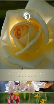 Package - Flora - 8 by resurgere