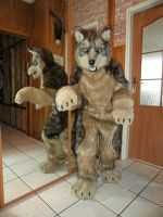 My new fursuit Maori Mexican wolf by Wilczyca-DarkWolf