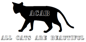 All Cats Are Beautiful by sootyjared
