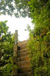 stair by blur-stock