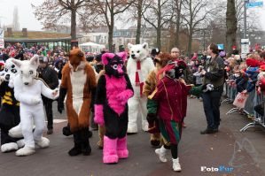 Thousands of Fans by FotoFurNL