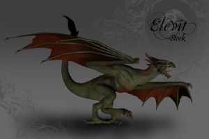 E-S Dragon Wyvern by Elevit-Stock