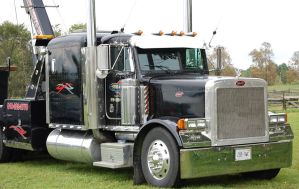 Shortnose Peterbilt by AMITALKINGTOYOU