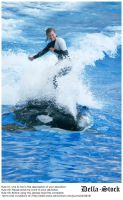Sea World: Riding Shamu by Della-Stock
