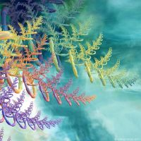 Thuja by Fractal-Kiss