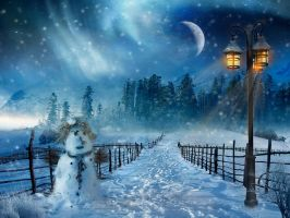 Snowy Night by charmedy