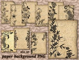 Background Paper by roula33