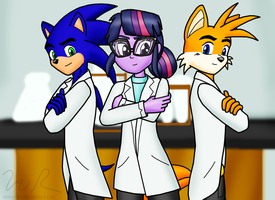 Sonic, Tails and Twilight, Ph.Ds by sonigoku