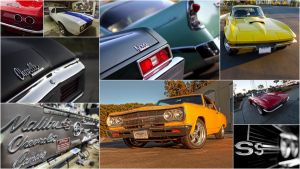 Muscle Car Collection by Doogle510