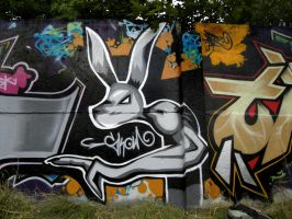 Black Rabbit Graffiti by skowcraft