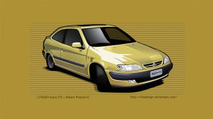 Xsara VTS toon by RibaDesign