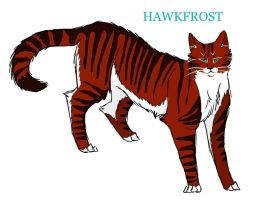 Hawkfrost by Lithestep
