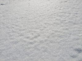 Snow Surface I by Baq-Stock