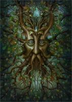 Nine sacred woods/Kingly Oak by jeshannon