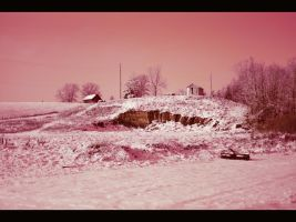 Faux Infra Red by tntrekabulator
