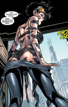 DC Comics - Selina Kyle in her Underwear by parkjussic