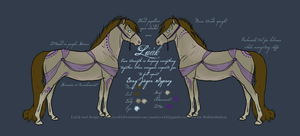 Lairk Reference  Sheet by sandeyes13