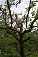 Tree Climber V by Eirian-stock