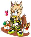 Zry The Flying Squirrel Sonic Channel by Omiza