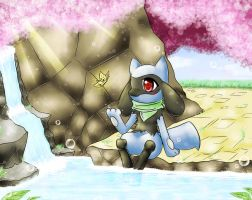 PMD, Riolu Discovers The Secrets In Beach Cave... by NemiruTami