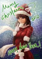 Merry Christmas!!!  2012 by Zeon1309