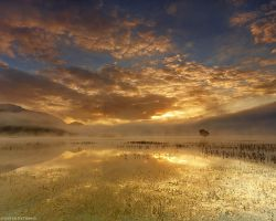 Golden sunrise at Stymfalia by pestilence