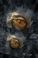 The Eyes-2010 by greenfeed