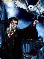 Harry and Hedwig by Fumik0