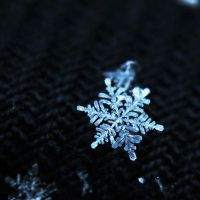 Little Snowflake II. by Kara-a