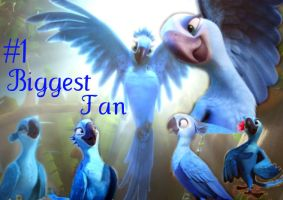 Jewels number one biggest fan by I-Love-RioTheMovie