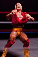 Hulkamania Forever by Batced