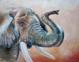 Elephant I by jeroenvv