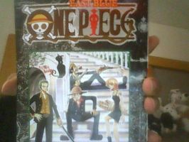 My 15th One Piece Volume by XfangheartX